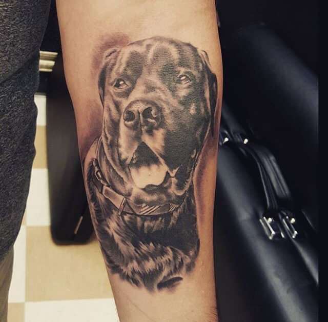 Honor your pet by getting a pet portrait done at mantra for Best tattoo artists in america